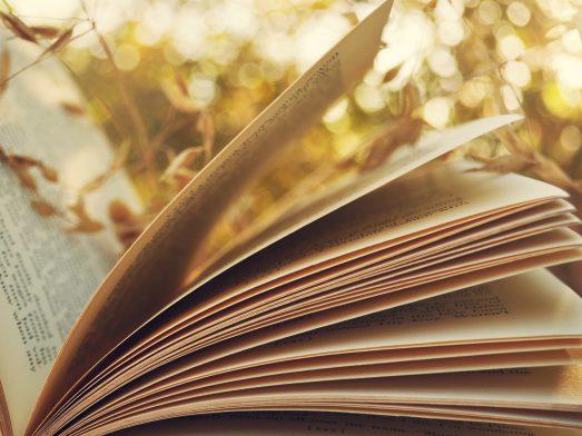 Как оценивается ЕГЭ по литературе