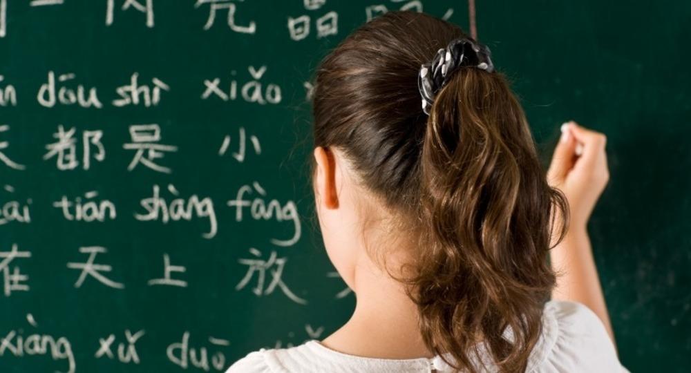 Участники ЕГЭ по китайскому языку плохо знают грамматику и имеют бедный словарный запас