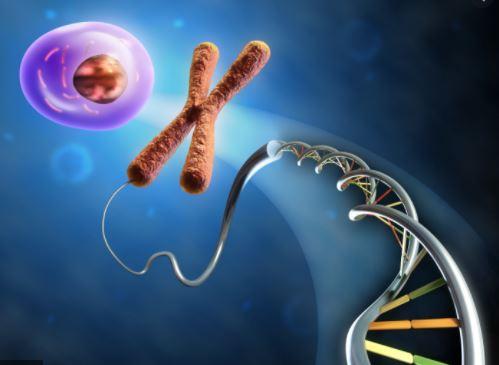 Решу ЕГЭ биология: что нужно знать в 2021 году?